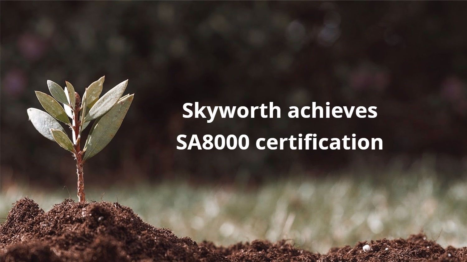 Skyworth achieves SA8000 certification